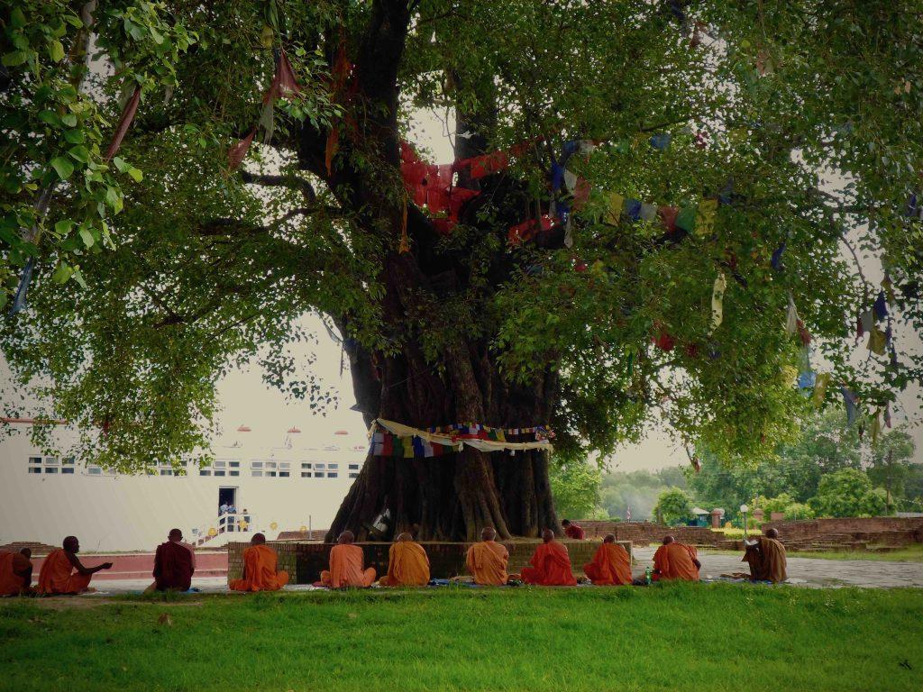 Lumbini monks