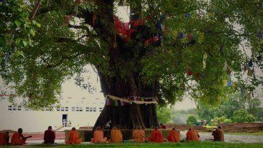 Lumbini monks Nepal
