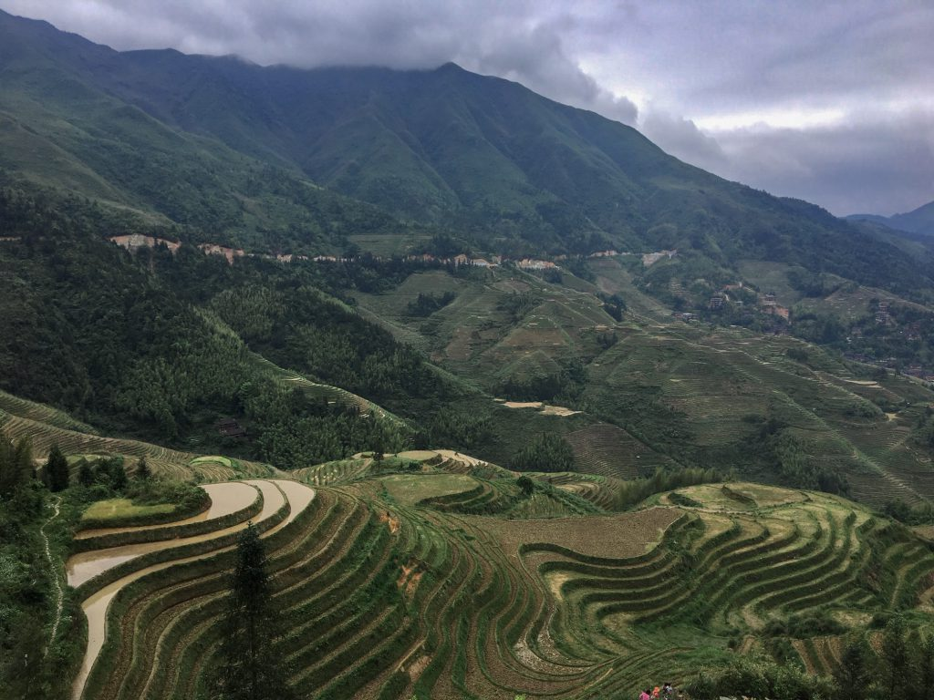 longji rice terrace china