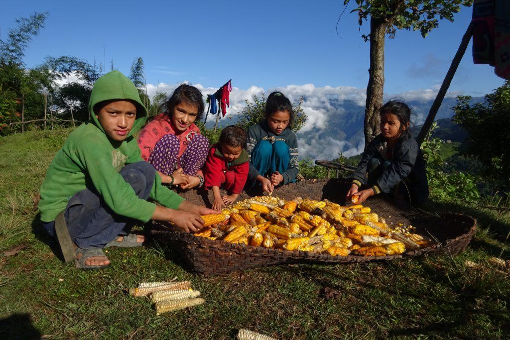 pike peak trekking nepal
