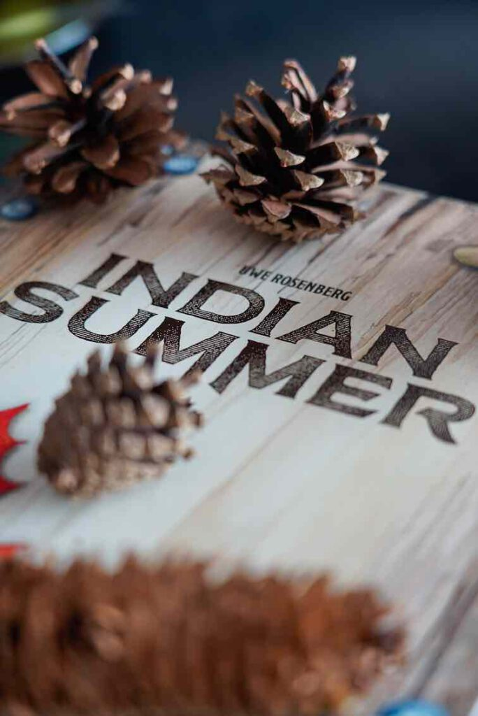 Indian Summer Veluwe